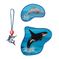 Step by Step Magic Mags - 3-teilig - move ORCA