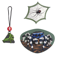 Step by Step Magic Mags - 3-teilig - JUMPING SPIDER